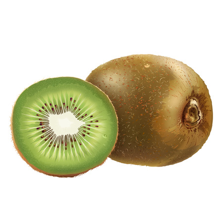 segment: Kiwi and his sliced segment. Isolated illustration on white background. Stock Photo