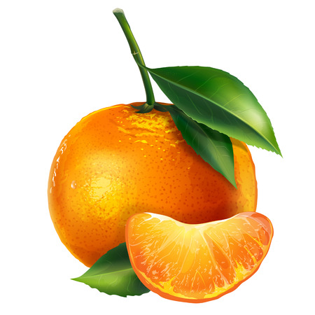 mandarins: Mandarin with leaves. Isolated illustration on white background. Stock Photo