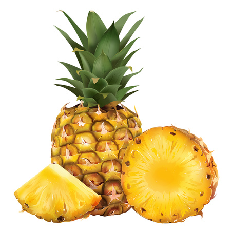 Pineapple and his sliced segment. Isolated illustration on white background.