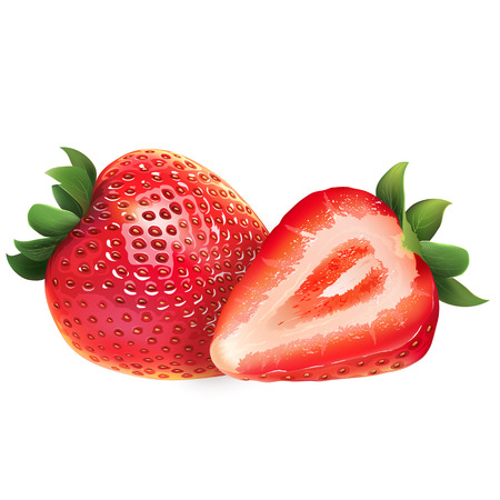 Strawberry and his sliced segment. Isolated illustration on white background. Stock Photo