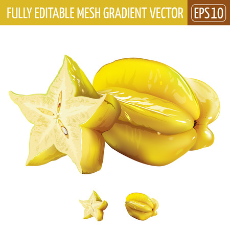 Carambola or starfruit. Isolated illustration on white background