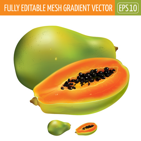 Papaya or pawpaw. Isolated illustration on white background.