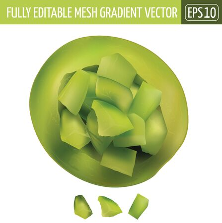 Green melon. Isolated illustration on white background.