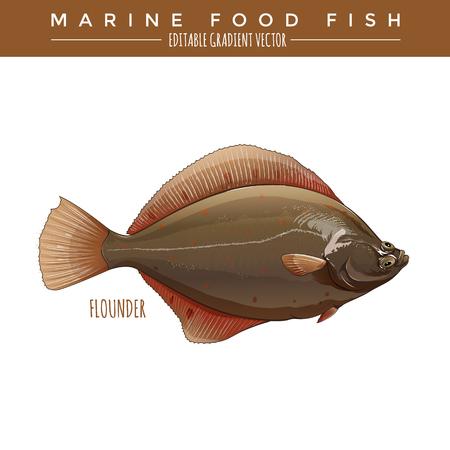 Flounder illustration. Marine food fish, editable gradient vector 向量圖像