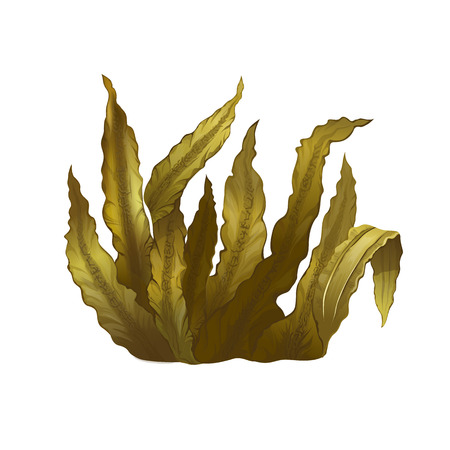 raster illustration: Seafood, isolated raster illustration on white background