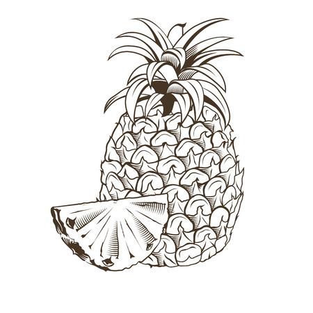 Pineapple in vintage style