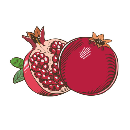 Pomegranates in vintage style