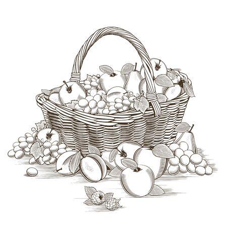 woodcut: Fruits Basket In Woodcut Style
