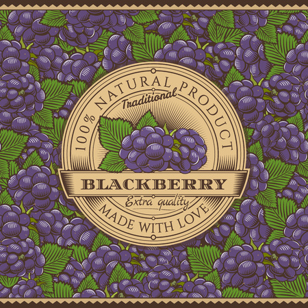 whortleberry: Vintage Blackberry Label On Seamless Pattern