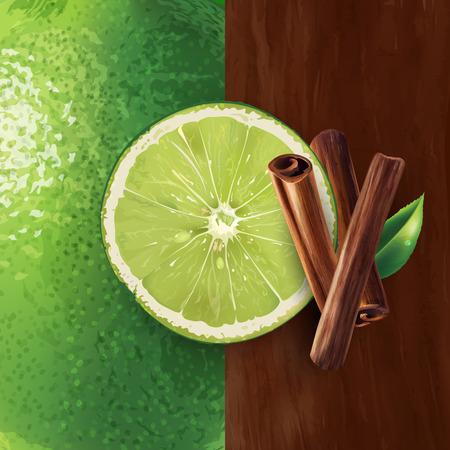 Zimt und grüner Kalk auf einem Hintergrund. Vektorgrafik