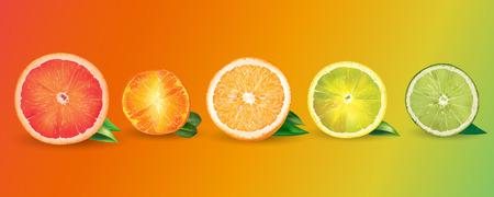 Orange, lemon, citrus, mandarin, grapefruit and lime Stock Photo