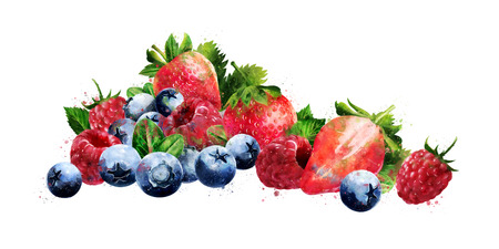 Raspberries, blueberries and strawberries on white background. Watercolor illustration Standard-Bild