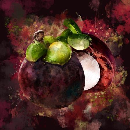 Mangosteen on dark background. Watercolor illustration