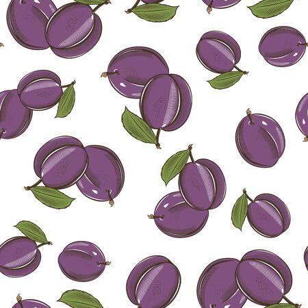 Modèle sans couture coloré avec des prunes dans un style vintage Vecteurs