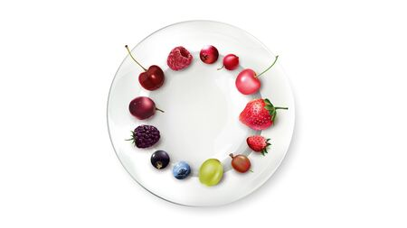 Different berries are laid out on a white plate. Realistic vector illustration. Use this composition for your presentation. Illustration
