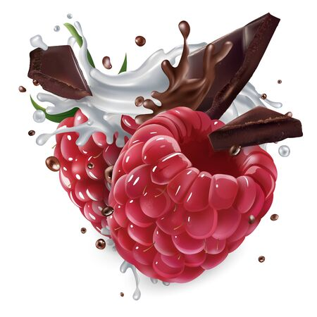 Raspberries with chocolate pieces and a splash of milk. 向量圖像