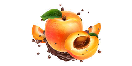 Ripe apricots and splashes of liquid chocolate.