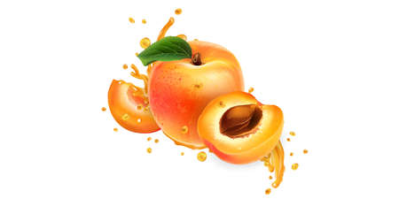Whole and sliced apricots in fruit juice splashes. Illustration