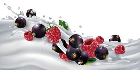 Black currants and raspberries on a yogurt or milk wave.