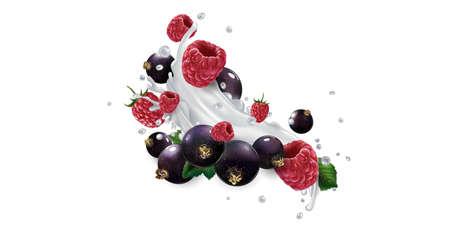 Black currants and raspberries in splashes of milk or yogurt.