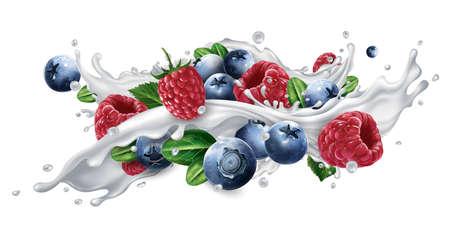 Blueberries and raspberries in a milk or yogurt splash.