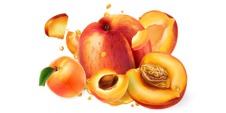 Fresh peaches and apricots and drops of fruit juice.