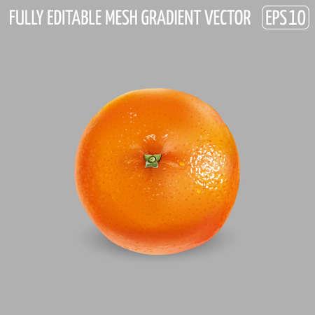 Ripe unpeeled orange on a gray background. Illustration