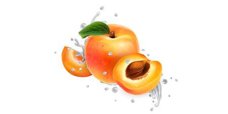Apricots in splashes of milk or yogurt.