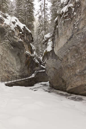 foot path: snowy wooden foot path through a frozen canyon