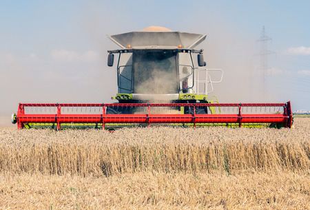 harvesters: Combine harvesters on wheat field Stock Photo