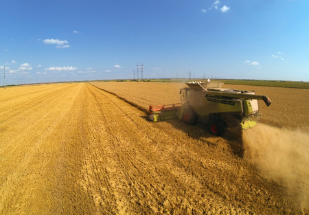 harvesters: Combine harvesters on wheat field  Aerial view by a drone