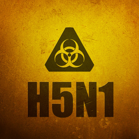 H5N1 Avian Flu - Bird Flu. Biohazard yellow alert sign Stock Photo