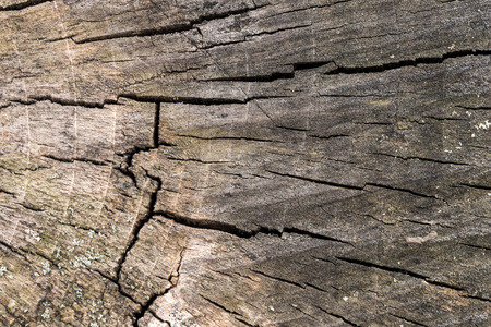 Wood texture abstract pattern Imagens