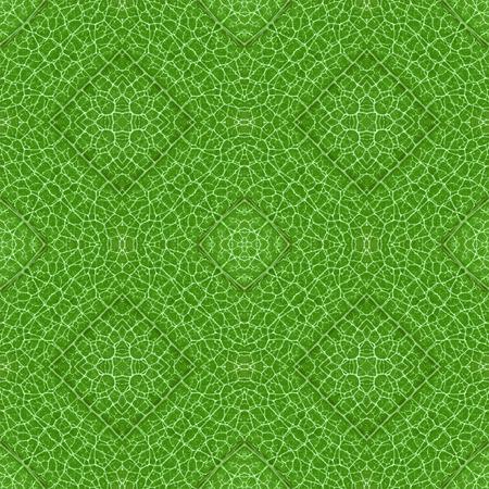 Complex symmetrical seamless organic pattern green texture
