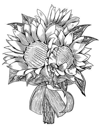 Sunflower wedding bouquet is hand drawn and live traced  Fills and outlines are separate groups, colors can be changed easily  Flowers and leaves are separate groups  Vector