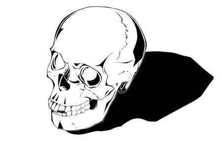 Comic human skull is hand drawn and live traced.