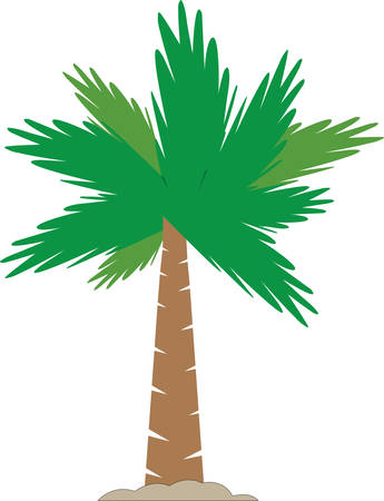 palmetto: Tropical palm tree in the sand. Illustration
