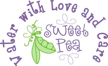 sweet pea: What a sweetie  just a little sweet pea  Add this fun little pod of peas to a gift for baby Illustration