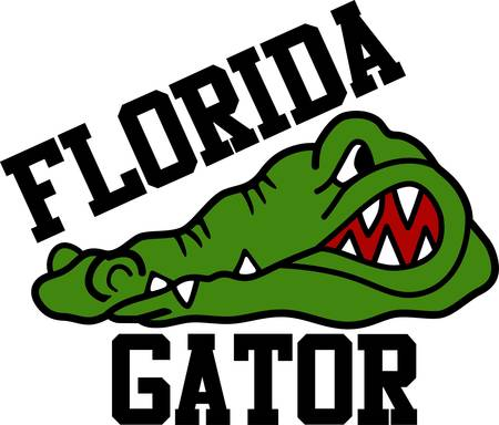 Florida Gators game to enjoy for both boys and girls pick those designs by Concord. Иллюстрация