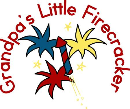 july 4th: Celebrate our freedom on July 4th with these fireworks  Perfect on items for family and friends to celebrate this day.  They will love it