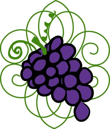 cluster: This wonderful cluster of red wine grapes stands out and makes a great gift for the connoisseur.  Pick those designs by Concord.