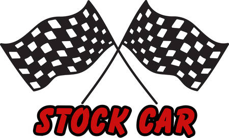 formula one racing: Checkered flags will help you celebrate the speedway in style  Add them to your NASCAR cheer gear.