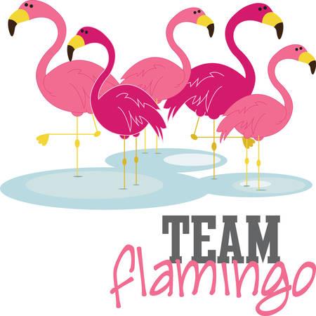 best friends forever: Best fabulous flamingo friends forever Illustration