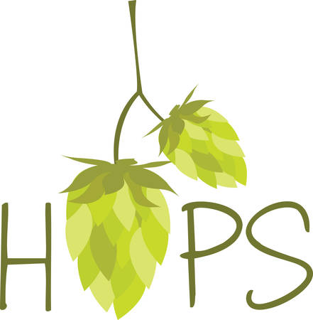 Hops is the key ingredient which makes beer tasty pick these designs from concord collections