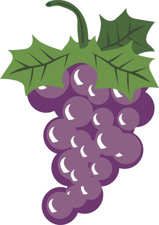 liked: There is stuff I would have liked to have done. But there are no sour grapes Illustration