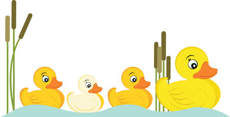 cattail: Pick these cute duck family designs from concord collections