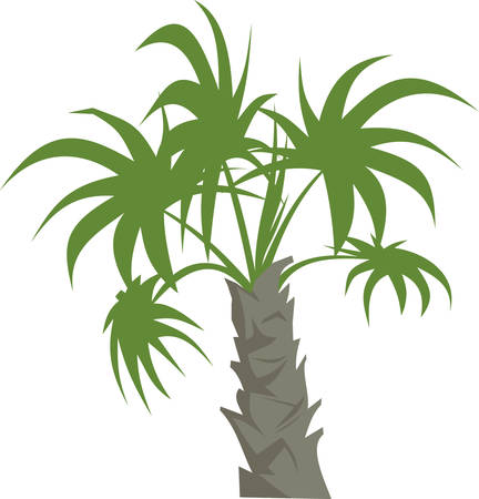 Pick the wonderful indoor palm tree plant designs by Concord 向量圖像