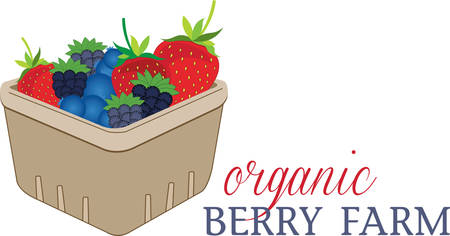 Fill the basket with colourful Basket of Berries design by Concord Illustration