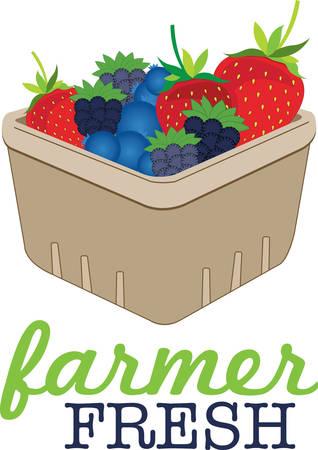 Vul de mand met kleurrijke Mand Berries ontwerp van Concord
