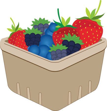 quart: Fill the basket with colourful Basket of Berries design by Concord Illustration